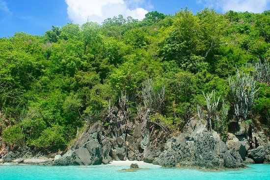Lion In Da Sun: The Mermaid Throne - great little spot on St John only accessible by boat