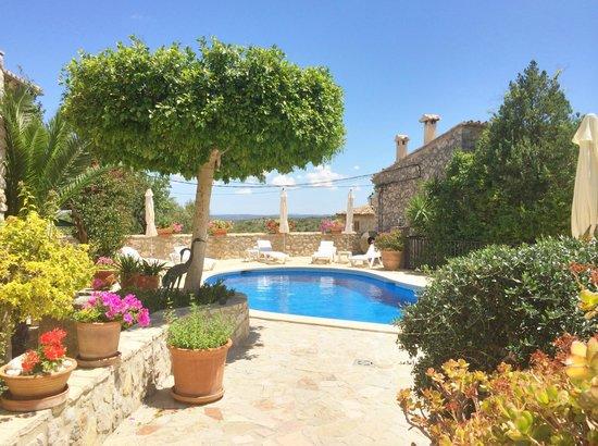 Can Furios Hotel: Der sehr gepflegte Pool