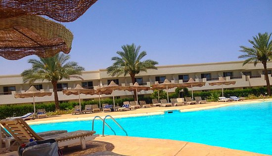 Viva Sharm Hotel : Relaxing quiet pool area