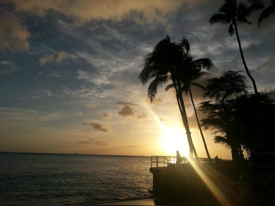 Halekulani Hotel: Postcard sunset of the Halekulani palms
