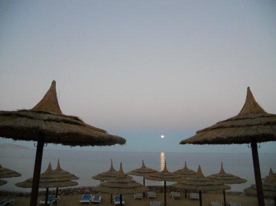 Royal Grand Sharm Hotel : закат
