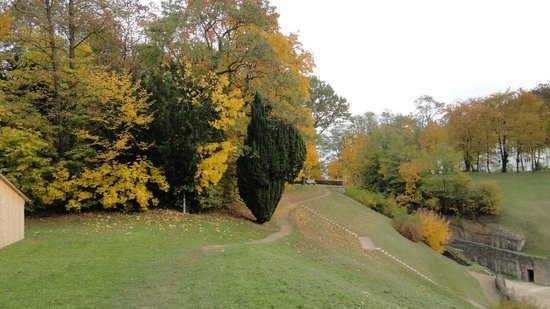 Amphitheater: The surrounding scenery is amazing - especially in the fall