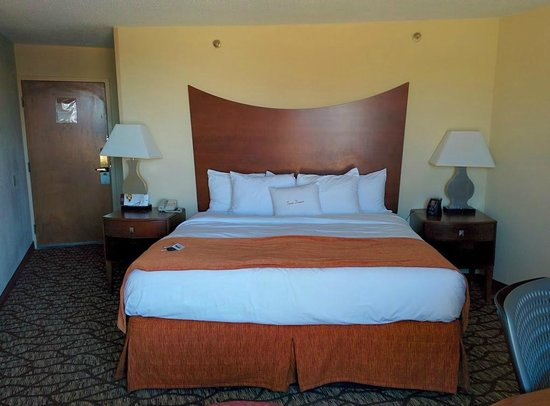 DoubleTree by Hilton Oak Ridge - Knoxville: Bed