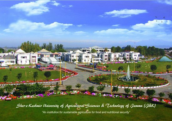 ‪Sher-e-Kashmir University‬