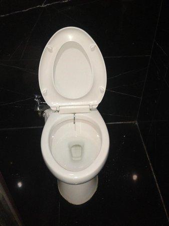 Merlynn Park Hotel: Toilet