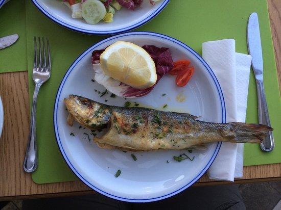 Ristorante Bella Blu: Heerlijke vis van de dag!!