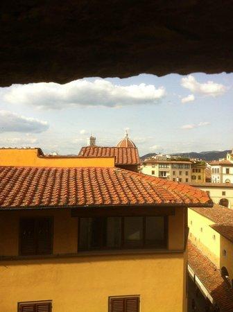 Pitti Palace al Ponte Vecchio: More views