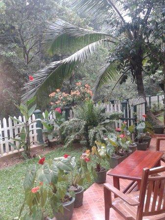 Kandy Guest House: Te sientes en plena naturaleza