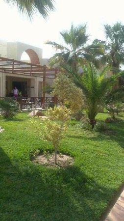 TUI MAGIC LIFE Penelope Beach: Well kept gardens