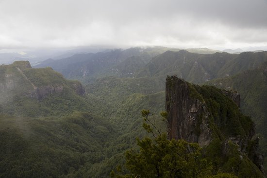 Kauaeranga Valley Visitor's Centre : View from the PInnacles Summit