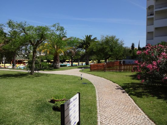Vila Petra Aparthotel : Grounds and pool