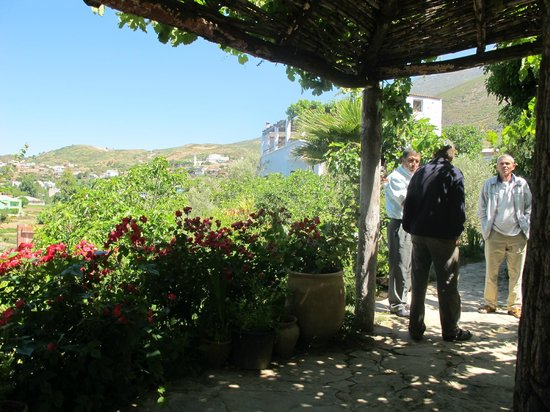 Dar Rihana : La terrasse...