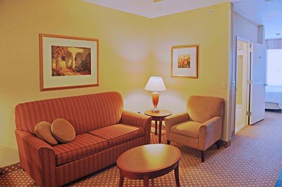 Hilton Garden Inn Oconomowoc : King Jr Suite