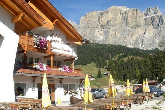 Wellness Hotel Lupo Bianco: Hotel Lupo Bianco Canazei