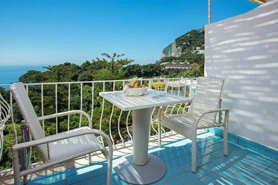 Terrazza vista mare - Picture of Hotel La Vega, Capri - TripAdvisor