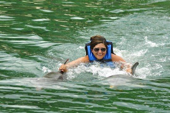 Dolphin Discovery Puerto Aventuras: Dorsal ride