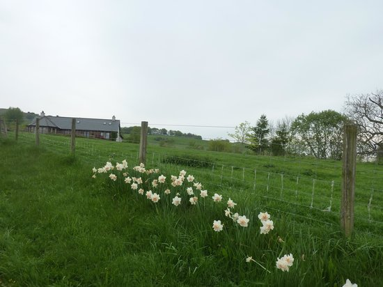 Falls of Holm: Die Farm