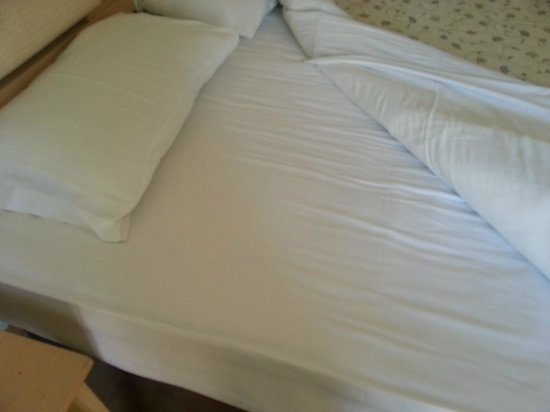 Sunland Hotel: You can see lots of little spots of old skin? sitting on the sheets