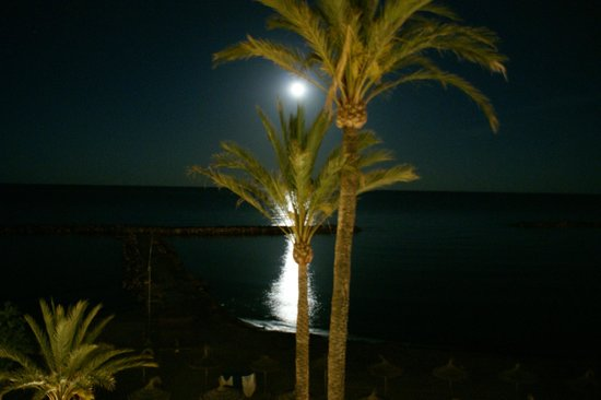 Gran Sol: full moon on monday