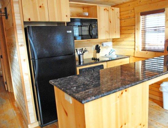 Mount Princeton Hot Springs Resort: All cabins have kitchens