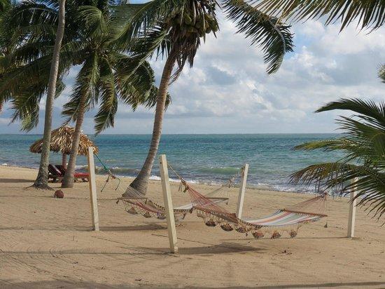 Almond Beach Resort & Spa : beachfront room, lovely view