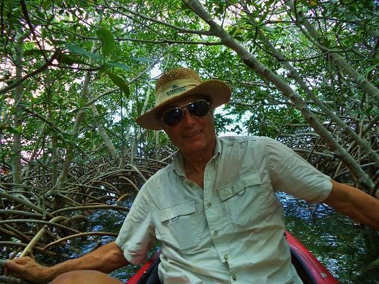 Florida Keys Kayaks and Eco Tours : Going through a mangrove tunnel