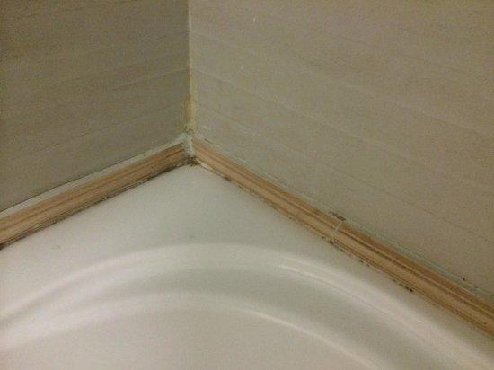 Camera con Vista: le tour de la baignoire