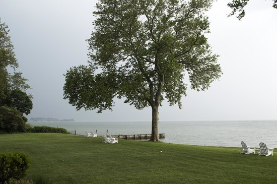 Sandaway Waterfront Lodging: Lawn/water in front of Sandaway. Beautiful Sycamore trees.