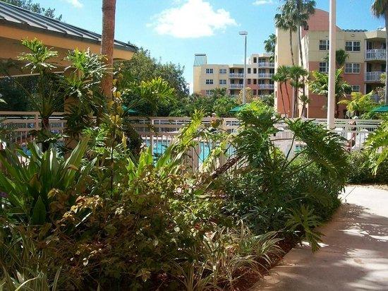 Vacation Village at Bonaventure: hotel buildings