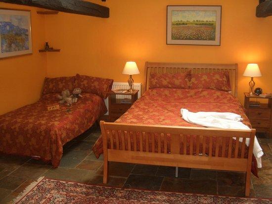 Gwarllwyn Bed & Breakfast : King sized bed and sofa bed