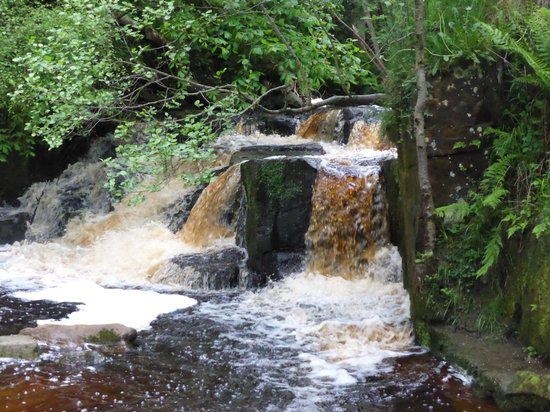 Hareshaw Linn: All so picturesque