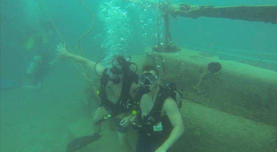 Dive Safaris: Bay dive