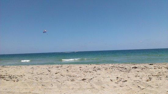 BEST WESTERN PLUS Oceanside Inn : Beach closest to the hotel