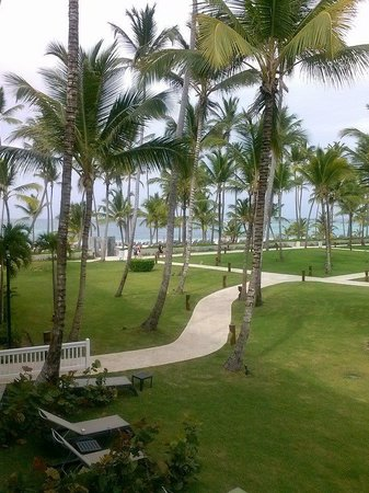 Barcelo Bavaro Beach - Adults Only: Great Morning View on the Balcony!!!
