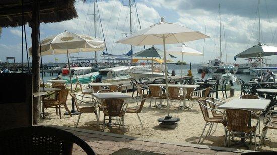 Caribbean Brisas: Brisas
