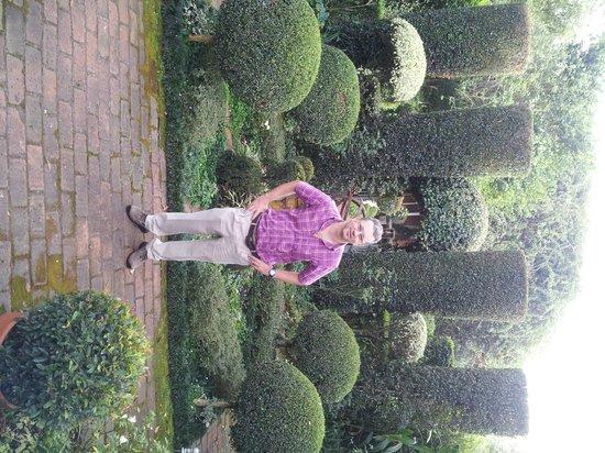 Rosehurst: garden 2