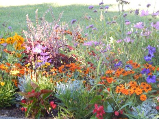 Parc Borély : les belles fleurs!