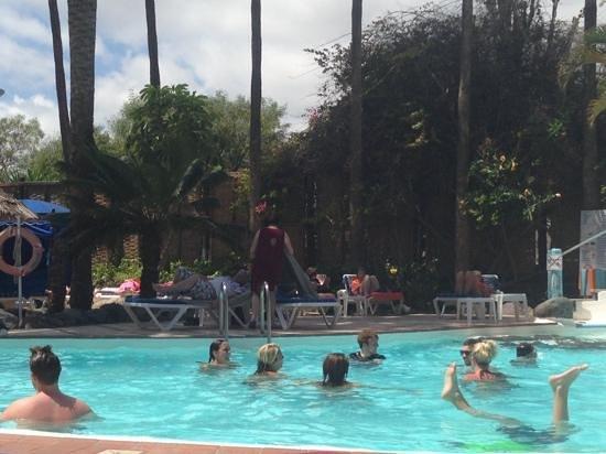 IFA Continental Hotel : fun in the pool