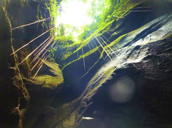 Extreme Dominica Canyoning & Adventure Tours: View up above