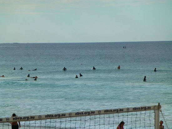 Manly Beach : Manly 7