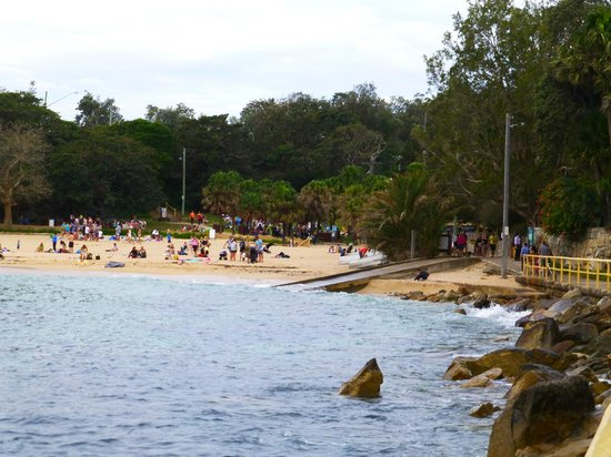 Manly Beach : Manly 12