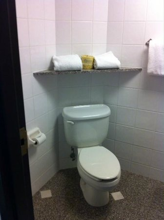 Drury Inn & Suites Nashville Airport: Water closet