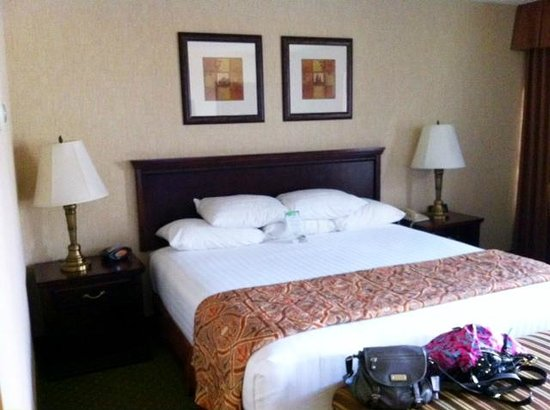 Drury Inn & Suites Nashville Airport: King size bed