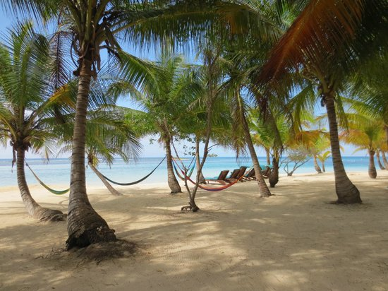 Pelican Beach - South Water Caye: hammock time!