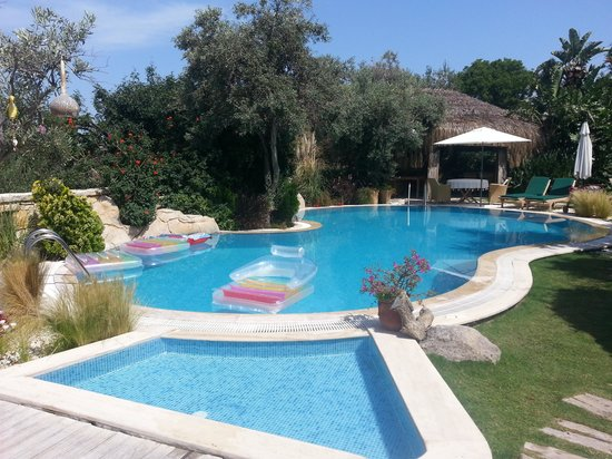 Sandima 37 Hotel Bodrum : The Pool