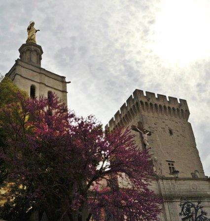Pope's Palace (Palais des Papes): Arquitetura Medieval exuberante !!!!
