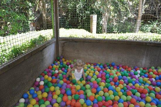 Bioparc Fuengirola: детская площадка в зоопарке