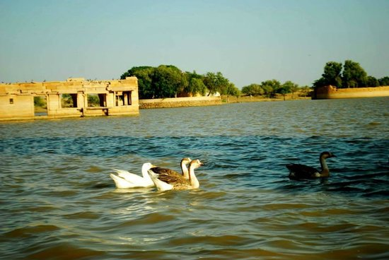 Gadsisar Sagar Lake: From the boat