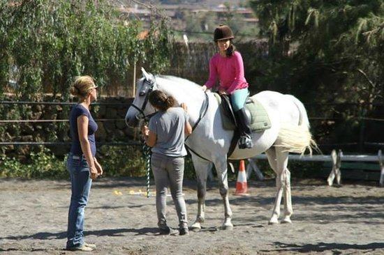 Centro Hípico Los Pinos Verdes: horse riding/lessons los pinos verdes lajares