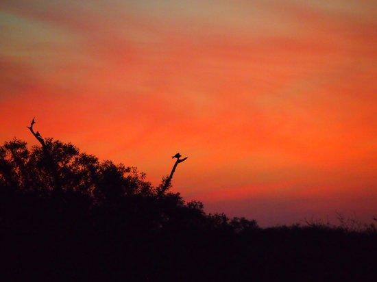 Hamiltons Tented Safari Camp: Sunset near Hamiltons